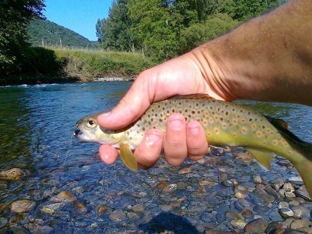 La pêche à la mouche en nymphe dans les Pyrénées FLY FISHING Pyrénées