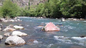FLY FISHING Pyrénées Guide pêche mouche Pallaresa