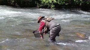 Séjours pêche mouche ESpagne