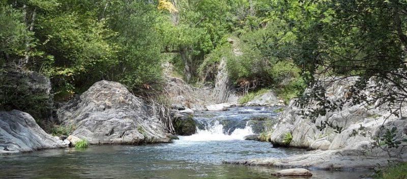 Guide de pêche à la mouche dans les Pyrénées