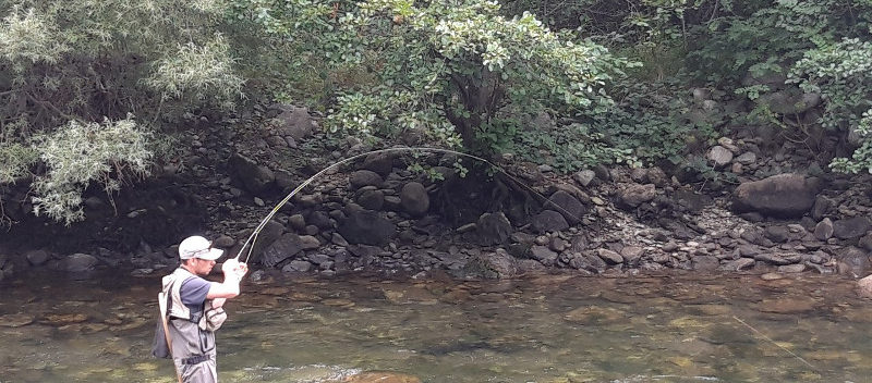 Pêche mouche Pyrénées